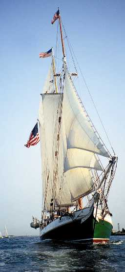 Liberty Clipper